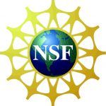 Fazel Receives NSF 2009 CAREER Award