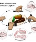UW develops diet aid designed to work with smartphone Thumbnail