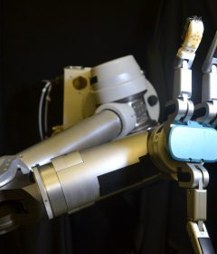 WNF supports the development of flexible 'skin' for robots