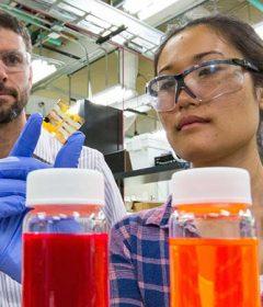 Researchers achieve quantum dot solar cell world record
