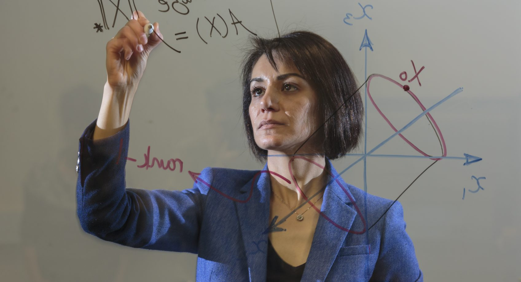Professor Fazel to lead NSF TRIPODS+X in data science Banner