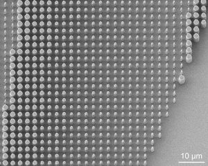 Close-up of nanopillars